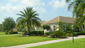 .  Our  landscape experts enhance your home's beauty and add value to your investment.